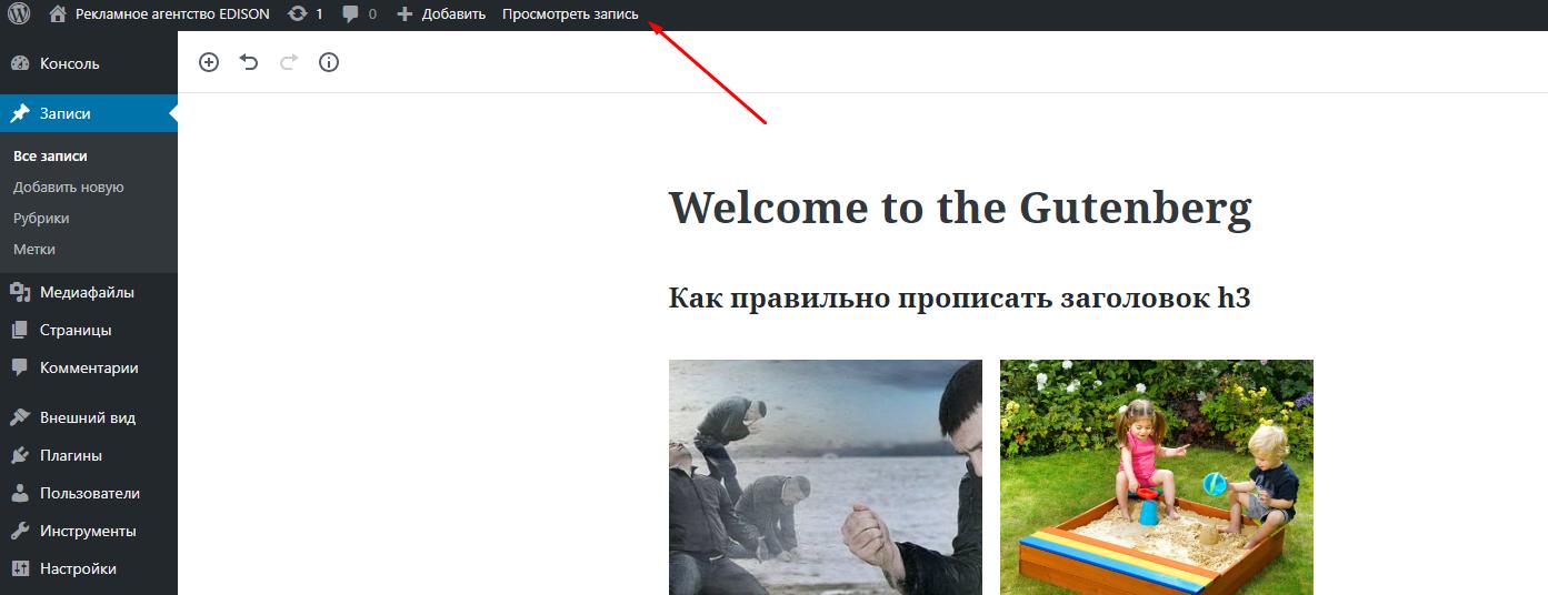Просмотр записи в Wordpress