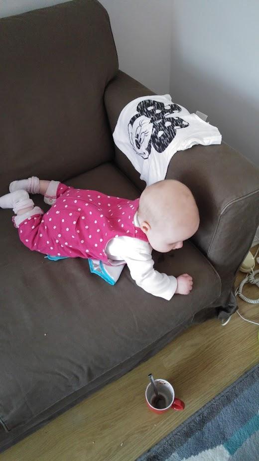 sofa flip