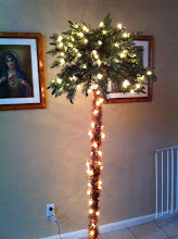 Photo: This is my new tree. It makes me happy just looking at it. :) Let's make it into a Christmas Tree!