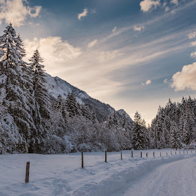 The way to the fairytale by Urban Meglič - Landscapes Forests ( clouds, nofilter, beautiful, forest, road, beauty, landscape, photo, photography, winter, sky, sunset, snow, slovenia, trees, view, wonderful )