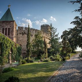 by Dusan Arezina - Buildings & Architecture Public & Historical ( castle, church, belgrade )
