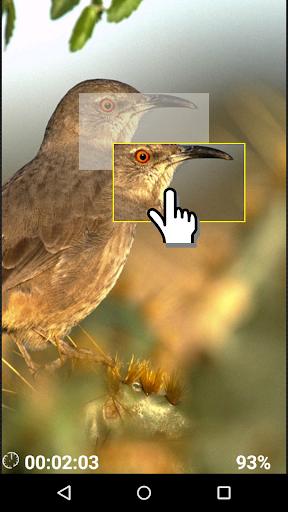 玩解謎App|Птички - логическая игра免費|APP試玩