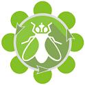 Budidaya Maggot BSF icon