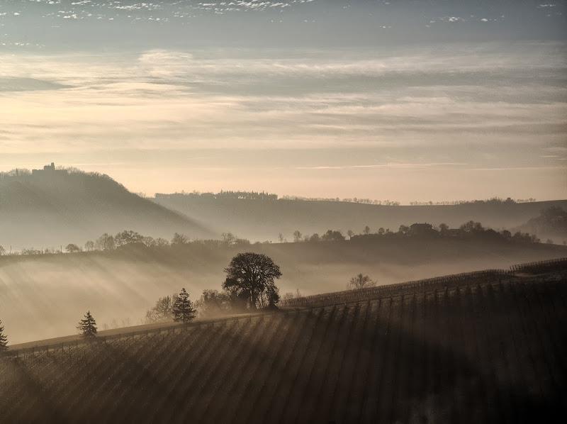 La nebbia in collina di alagnol