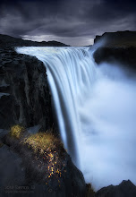 """Photo: """"Resistance"""" 