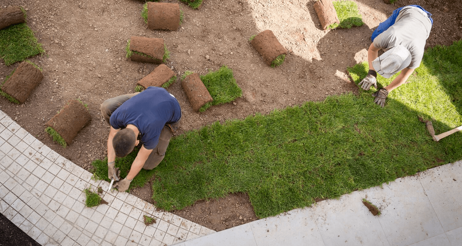Landscaping ideas to improve home, Latest News Adda