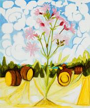 "Photo: Ragged Robin Drawing, pencil and acrylic on mylar, 36"" x  30"", 2012"