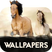 Wallpapers with horses