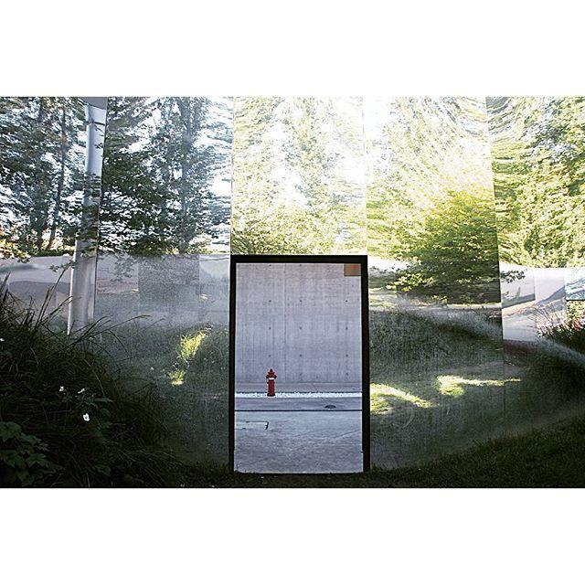 Porta Magica   #natura #nature #door #art #secretgarden #green #reflection #shadow #inside #minimal #urbanexploration di paola_mari1983