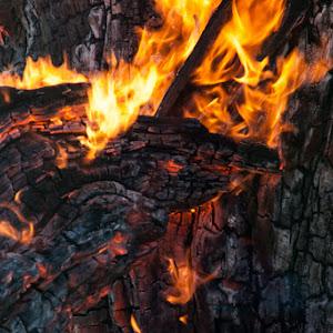Fire-PM12-20763-PX.jpg