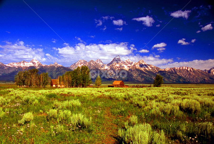 JACKSON HOLE TETON VALLEY by Gerry Slabaugh - Landscapes Prairies, Meadows & Fields ( barn, wyoming, grand tetons, jackson hole, tetons )