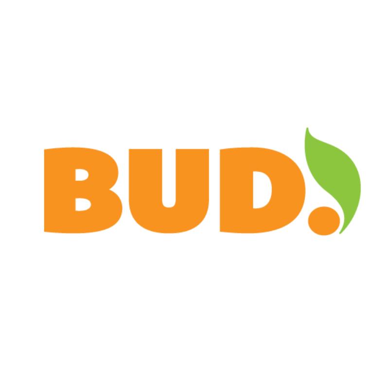 BUD Lead Positive Change logo