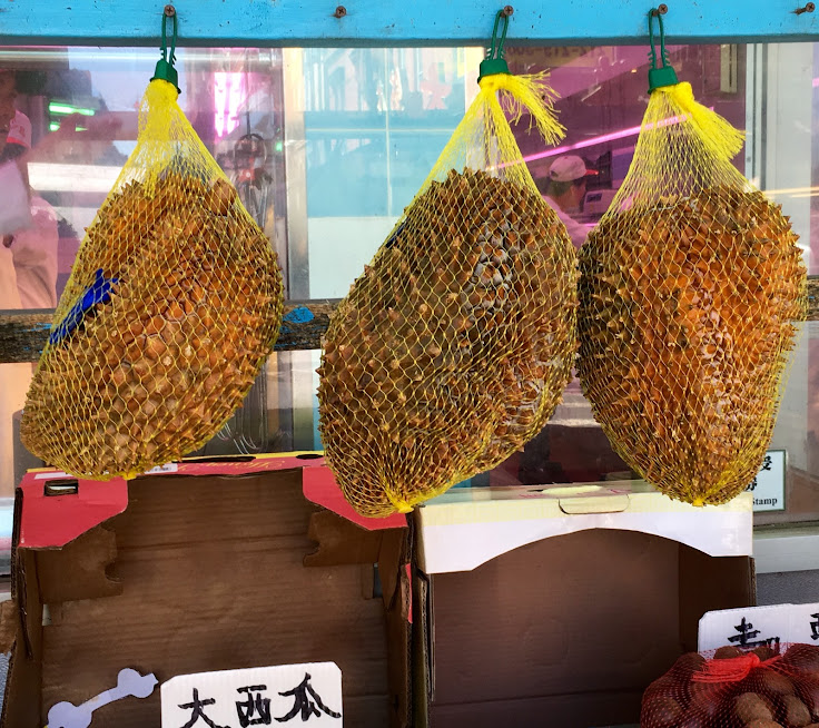 "Durian fruit hanging outside. Most places ban it because it ""tastes like heaven, smells like hell."""