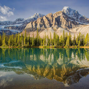 Rocky Mountains Reflecting in Bow Lake by Penny Miller - Landscapes Mountains & Hills ( water, reflection, canada, green, reflected, lake, forest, mountain mountains, banff, reflecting, clear, beautiful tranquil, tree, gorgeous, blue, serene, trees,  )