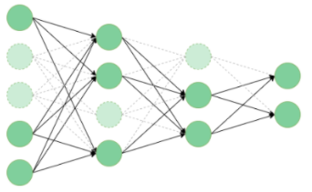 Structured Pruning Neural Networks