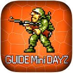 Guide for Mini DAYZ Icon