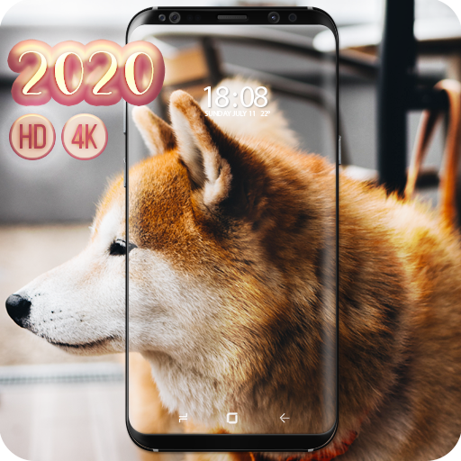 Shiba Inu Wallpaper Aplikasi Di Google Play