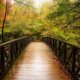 Mountain Bridge  by Teresa Solesbee - Buildings & Architecture Bridges & Suspended Structures ( rainy, mountains, fall, nature, bridge )