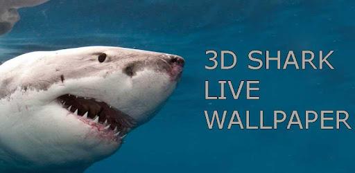 3d Shark Live Wallpaper Apps On Google Play