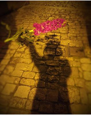 Ombre e fiori di Lauramigliorino