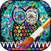 Adult Coloring Book Mandalas