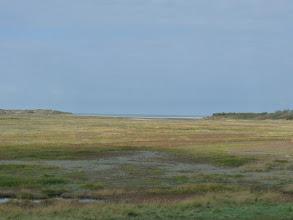 Photo: Le  Parc Naturel du Zwin s'ouvre sur la Mer du Nord