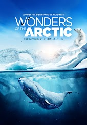 Wonders of the Arctic