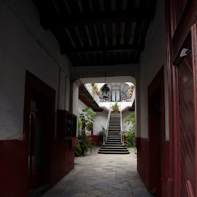 Great Entrance by Cristobal Garciaferro Rubio - Buildings & Architecture Other Interior ( marble, stairs, pwcopendoors, wood, mexico, puebla )