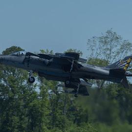 AV-8B Harrier by Ron Malec - Transportation Airplanes ( airshow, mcas beaufort, harrier, av-8b )
