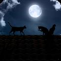 Cat Moon Live Wallpaper icon
