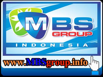 http://www.mbsgroup.info/