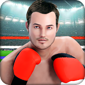 Punch Boxing Fighting Crush 3D