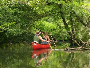 Photo: Esplorando tra i boschi delle rive