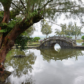 Reflections of Queen Liliuokalani by Beth Bowman - City,  Street & Park  City Parks (  )