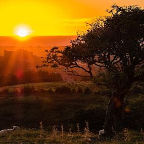 by David Bevan - Landscapes Sunsets & Sunrises