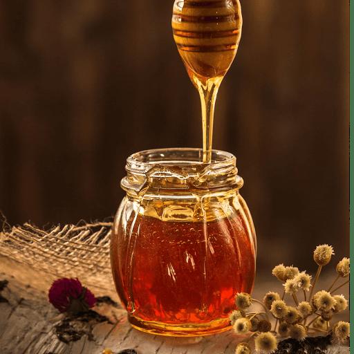 rucher de la croix blanche miel producteur