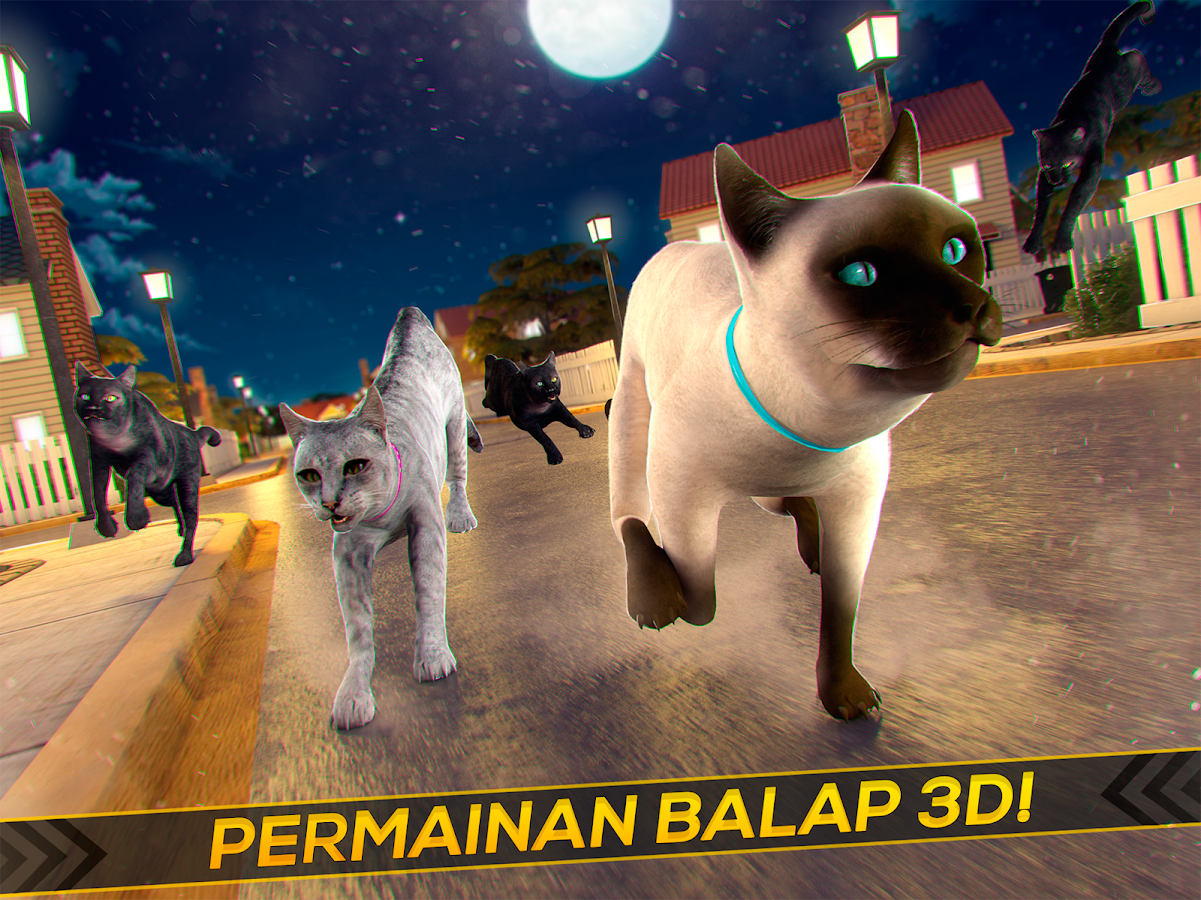 Meow Anak Kucing Bayi Imut Apl Android Di Google Play