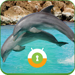 Jumping Dolphins Wall & Lock