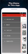 Wolf Drawing - screenshot thumbnail 07