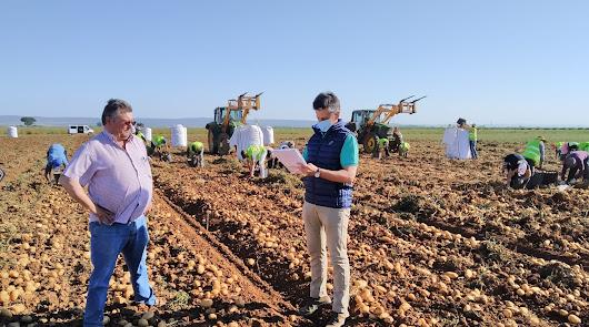 AGROCOLOR mantiene su liderazgo en certificación GLOBALG.A.P.