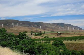 Photo: Windmills near Maryhill, Washington