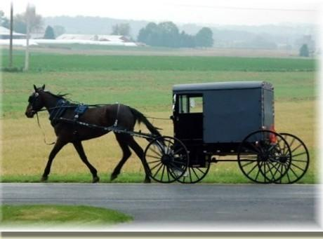 Amish Six Layer Dinner Recipe