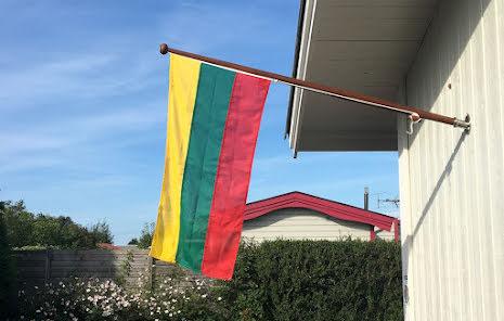 Litauens Flagga