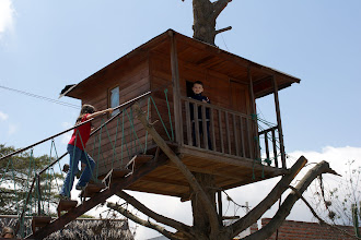 Photo: There's a museum that claims to have the true GPS location of the Equator. At the entrance they have a treehouse. Why? I don't know.