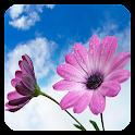 Flowers Jigsaw icon