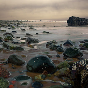 by Rod Fewer - Landscapes Waterscapes ( barnacle, fundy, long exposure, ocean, seascape, rocks,  )