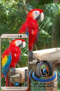 Camera Mozaik - náhled