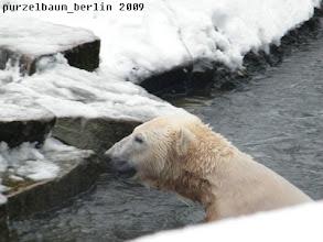 Photo: Hm, Gianna war es wohl zu kalt im Wasser ;-)