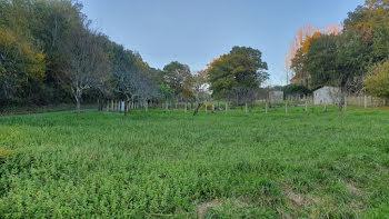 terrain à Brive-la-Gaillarde (19)
