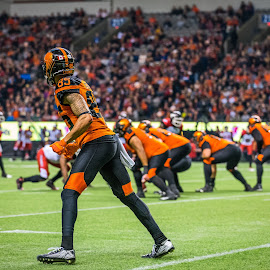 Going Wide by Garry Dosa - Sports & Fitness American and Canadian football ( sports, teams, players, black, cfl, spectators, football, people, professional, orange, standing, ready, indoors, stadium )